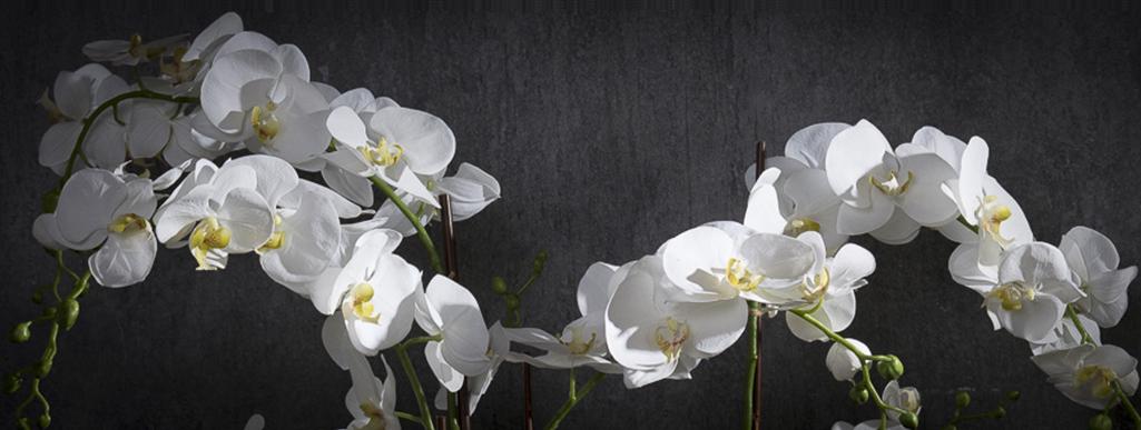 100% Имитация орхидей.
