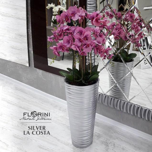 Silver La Costa