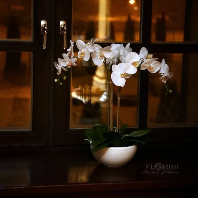 Treesta White / Триста Вайт