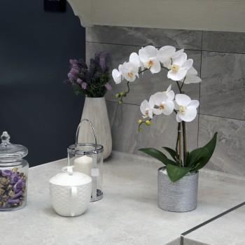 Silver Flori